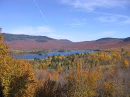 Maine Land & cabin for sale in 100 Mile Wilderness of