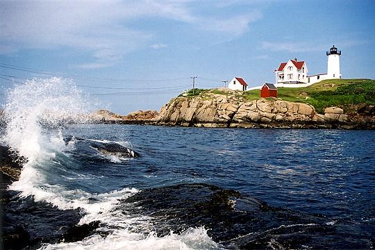 Ocean Front Hotels Near Portland Maine
